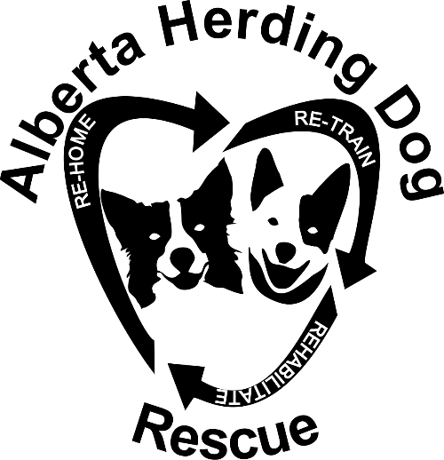 ALBERTA HERDING DOG RESCUE